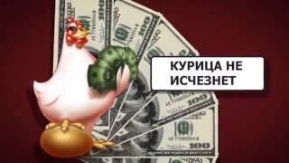 Money birds  Стратегия заработка олайн