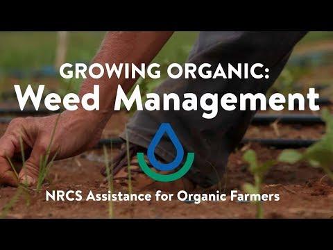NRCS: Weeds