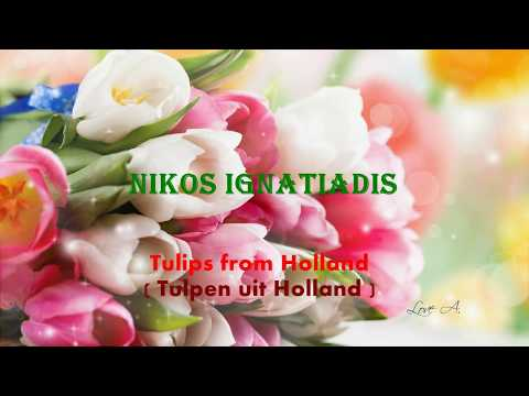 ♥ Ƹ̵̡Ӝ̵̨̄Ʒ ♥ TULPEN UIT HOLLAND -- NIKOS IGNATIADIS