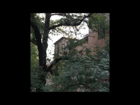 """Dove, Sarajevo"" from Tongue Screw by Heather Derr-Smith"
