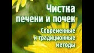 ЧУДО ДЛЯ ПОХУДЕНИЯ И ДАЖЕ КАМНИ В ПОЧКАХ И ПЕЧЕНИ РАССТВОРЯЕТ ДАЙКОН 19.11.17