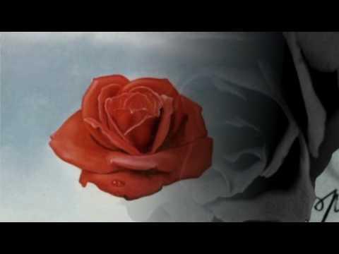 Eu Nunca Mais Vou Te Esquecer Moacyr Franco Letrasmusbr