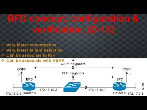 BFD concept, configuration & verification step by step (D-13)