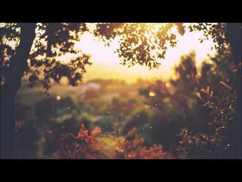 Клип The Best Pessimist - Walking With Happiness