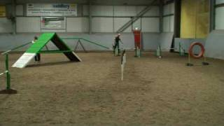 Dog Agility Can Be A Humbling Experience At Times..............