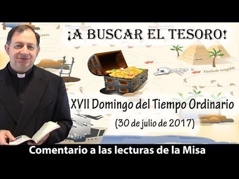 ¡A BUSCAR EL TESORO! - XVII Domingo del Tiempo Ordinario (30 de julio de 2017)