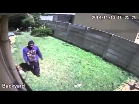 Amazing dog attack in south africa