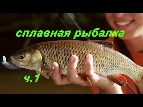 рыбалка мста спиннинг