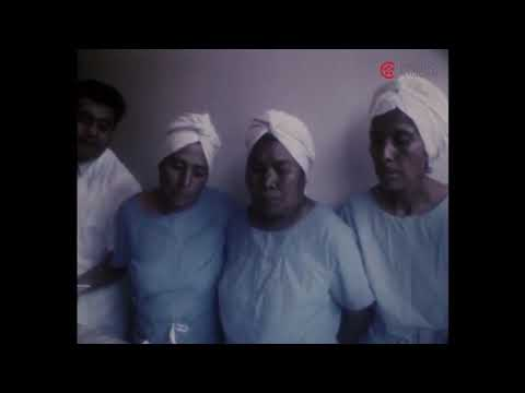 Partera empirica en Milpa Alta (fragmento) Celia Rosales Román, Humbert Pali Salazar, 1973