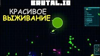 Необычные игры: [Brutal.io] (Красивое выживание) # 30