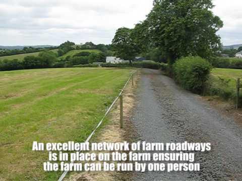 Property: 87ac Cavan farm up for auction