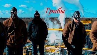 Грибы - Тает Лёд (пародия)