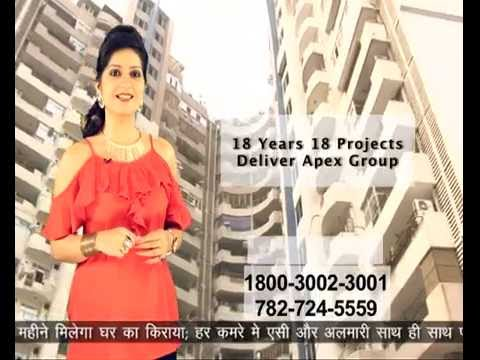 Exclusive Property 4 You Apex Floral Realcon Festive scheme, Must Watch