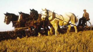 Horses to tractors, changes in farming -- Oral pioneer history with Paul and Violet Flundra P1