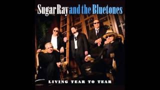SUGAR RAY AND THE BLUETONES - I DREAMED LAST NIGHT Thumbnail