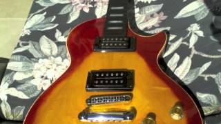 Homemade Gibson Les Paul