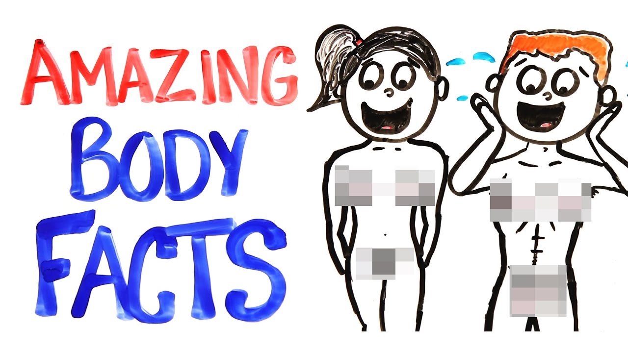 Why Your Body Is AMAZING! - YouTube