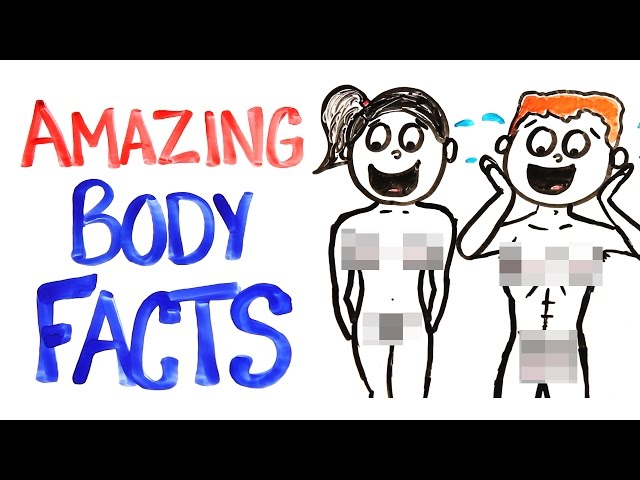 18 Facts You Didnt Know About How Amazing Your Body Is The