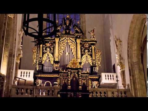 Jan Václav Stamic (Stamitz) Organ Concerto No.2 in C major, Alena Vesela