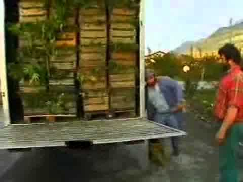valchanvre chanvre suisse