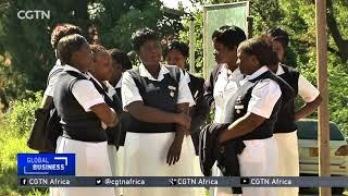Zimbabwean striking nurses challenge mass dismissal in court