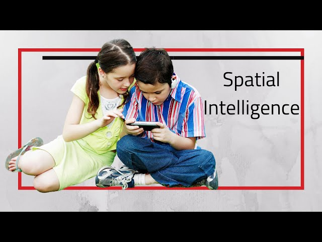 Spatial Intelligence and Visual Learners