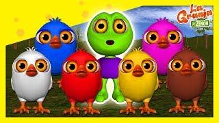 ¿Qué es Diferente? | #02 Pollitos Pío de Colores | La Gra...
