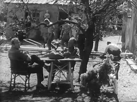 Bakomfilm om Ingmar Bergmans Gycklarnas afton
