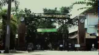 Video Profil PINDAD