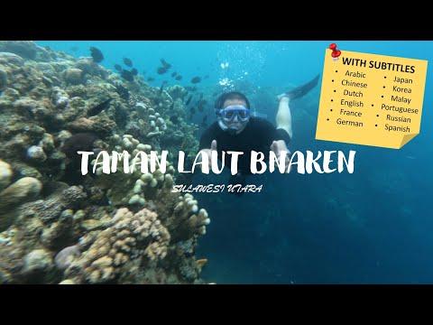 snorkeling-di-taman-laut-bunaken-sulawesi-utara