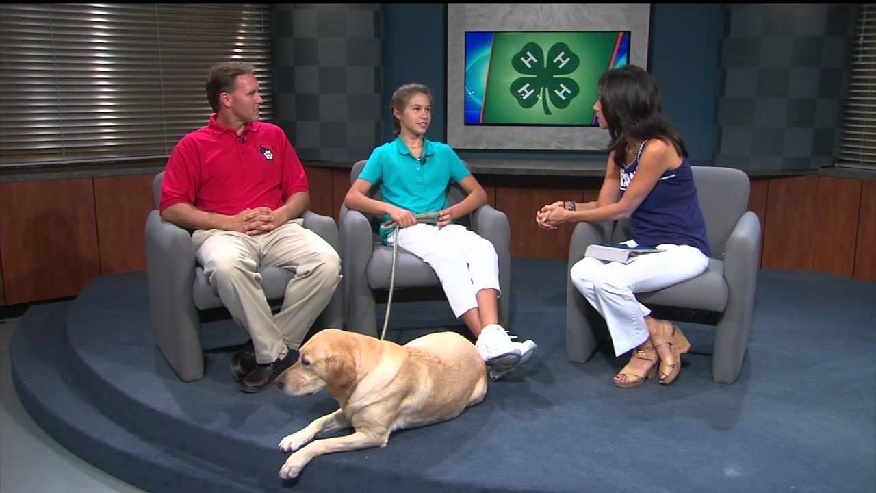 4-H dog show comes to town - YouTube
