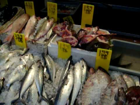 Chinatown New York - fresh fish and frogs