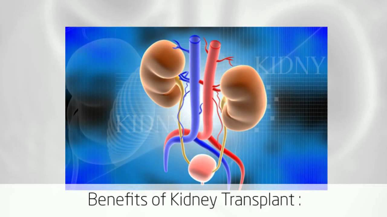 the process of kidney transplant