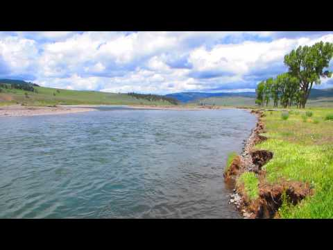 Lamar River Scenery Yellowstone National Park