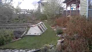 permaculture yard in olds