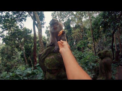 Bali Through My Eyes - GoPro HERO 6 (POV)