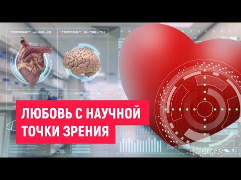 Любовь с точки зрения науки. Как влюбить в себя человека.