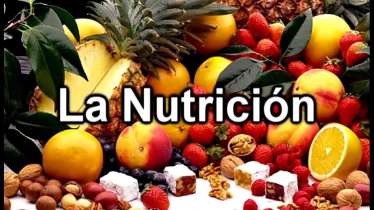 Resultado de imagen para la nutricion