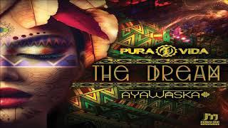 Pura Vida & Ayawaska   The Dream ᴴᴰ YouTube Videos