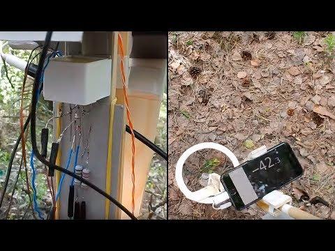DIY Metal Detector №1 (Forest)