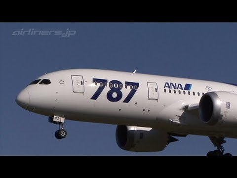 [B787-Okayama airport] NH788_JA801A_OKJ111019