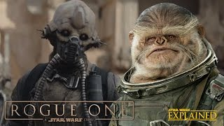 The New Aliens Of Rogue One: A Star Wars Story