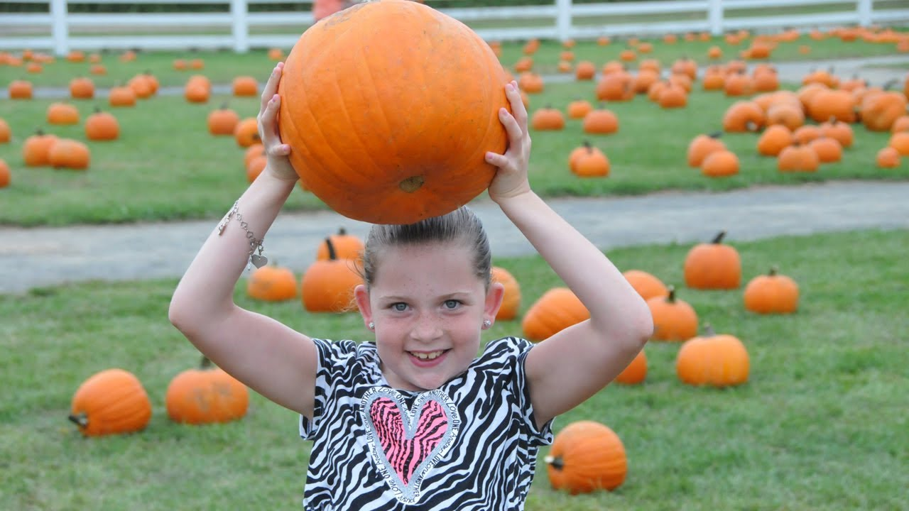 Best Pumpkin Picking Long Island