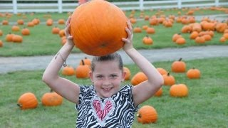 Long Island Pumpkin Picking - Take advantage of the best Pumpkin Picking farm in Long Island