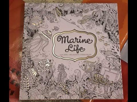 Présentation du livre de coloriage Marine Life