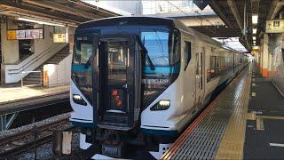 【おどりこ】E257系 特急 踊り子@大船駅
