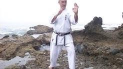 52 Masters Sensei Ed Smith- Shukokai Karate power punching!