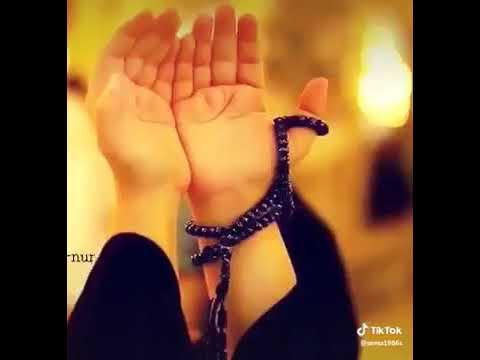 WhatsApp üçün Allaha aid super video😊