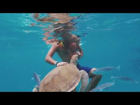 Barbados Privet Yacht travel