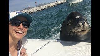 Cabo | Deep Sea Fishing & Poncho The Sea Lion!!!